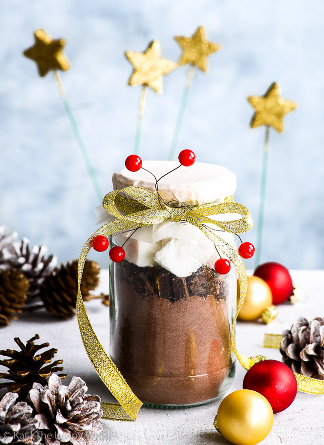 Mason Jar Hot Chocolate DIY Christmas Gifts {gluten, dairy, egg, nut & soy free} - This mason jar hot chocolate makes the perfect edible DIY Christmas gift. With a simple hot chocolate mix, chopped dark chocolate and homemade marshmallows, this simple yet thoughtful DIY gift will be loved by all – even the grinchiest of Grinches!