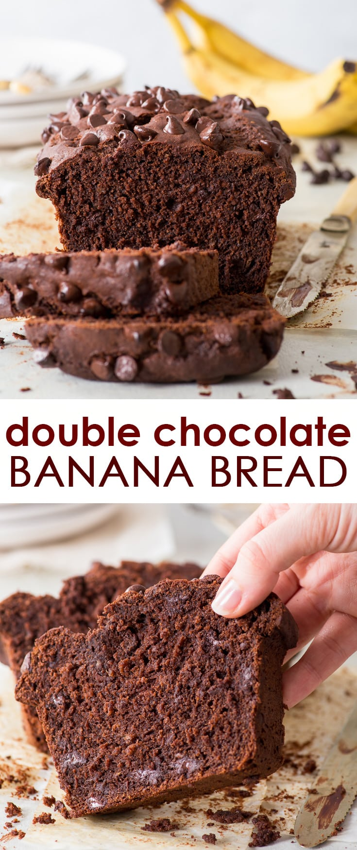 Double Chocolate Banana Bread (Gluten Free) - Moist, flavourful, chocolatey and just super delicious – this double chocolate banana bread is the ultimate comfort food. Easy to make, gluten free and generously studded with chocolate chips, it really doesn't get much better than this. Gluten free banana bread recipe. Banana dessert. Gluten free desserts. Gluten free recipes. Easy dessert ideas. Chocolate recipes. Chocolate chip banana bread. #bananabread #glutenfree