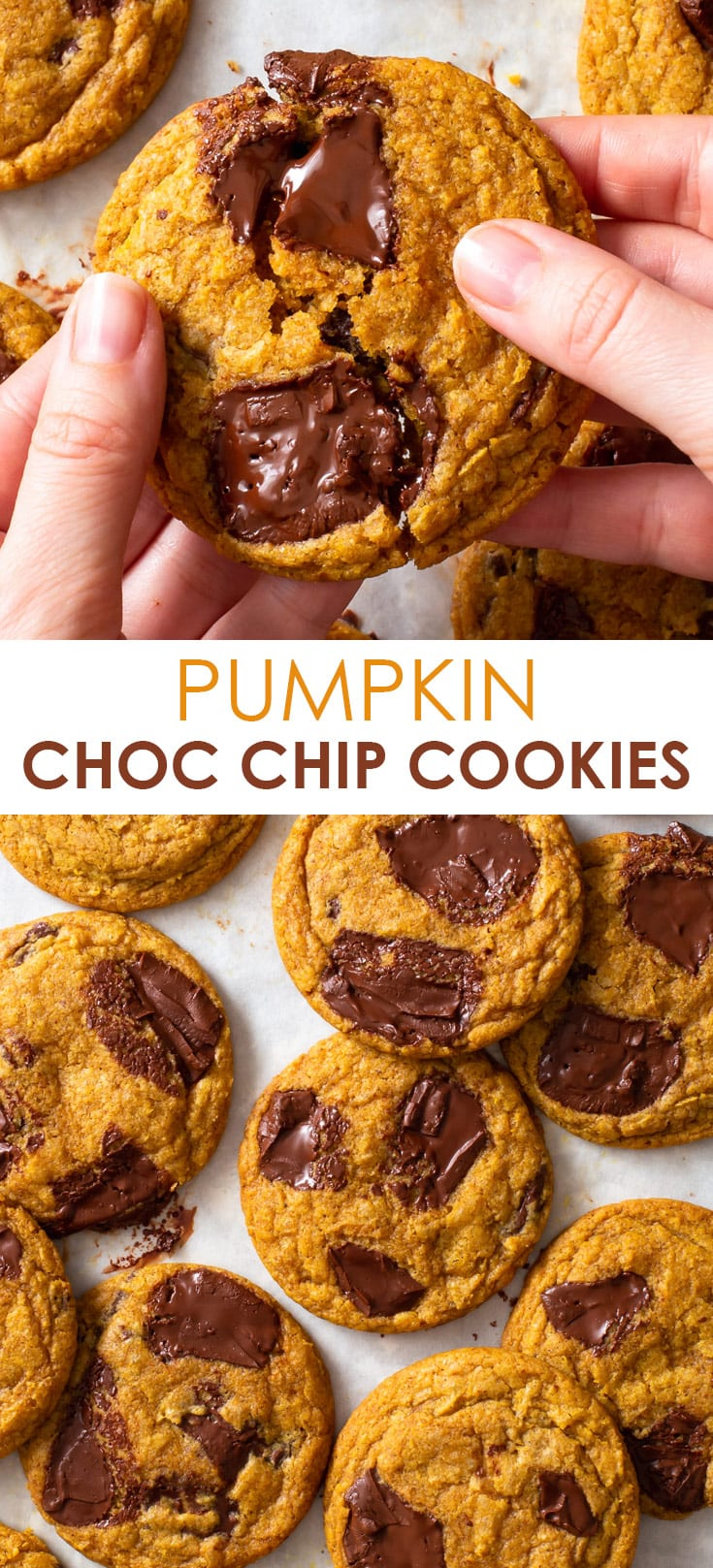 Pinterest image for pumpkin chocolate chip cookies.