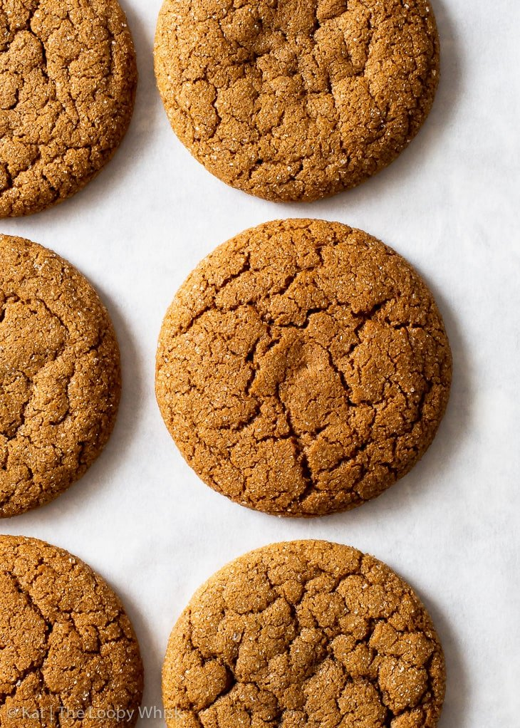 Overhead view of molasses cookies on white baking paper.